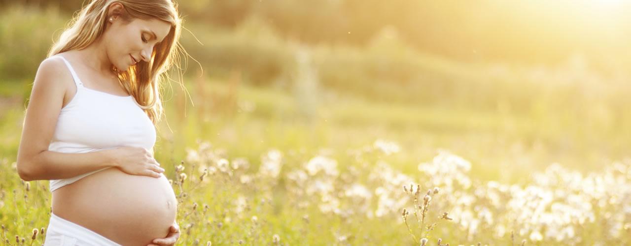 Contraindicaciones del jengibre durante el embarazo